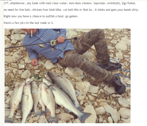 Excerpt from Texas Fishing Forum - Lake Texoma