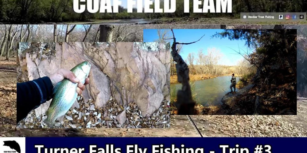 Oklahoma Rainbow Trout Archives - Stocker Trout Fishing